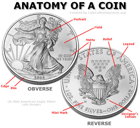 Silver Coin Anatomy