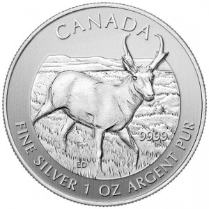 Canadian Wildlife 2013 Canadian Pronghorn Antelope Silver Bullion Coin