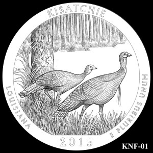 Kisatchie National Forest Silver Coin, Design Candidate KNF-01