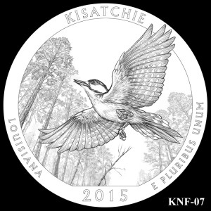 Kisatchie National Forest Silver Coin, Design Candidate KNF-07