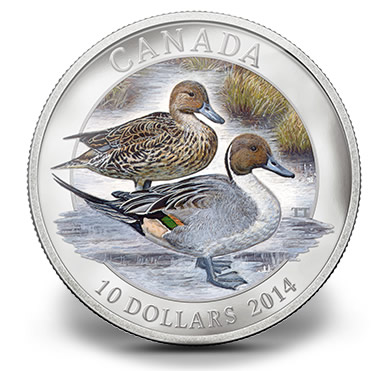2014 $10 Canadian Pintail Duck Silver Coin